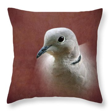 Eurasian Collard Dove Throw Pillow by Angie Vogel