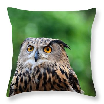 Eurasian Or European Eagle Owl Bubo Bubo Stares Intently Throw Pillow by Imran Ahmed