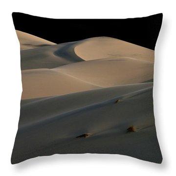 Eureka Dune Dreams Throw Pillow by Joe Schofield