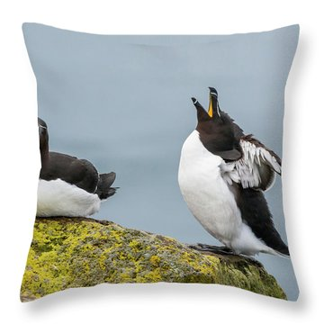 Razorbill Throw Pillows