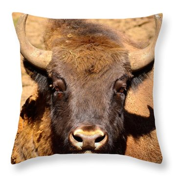 European Bisons Throw Pillow by Tommytechno Sweden