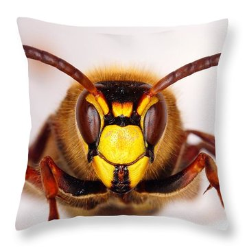 European Hornet-vespa Crabro Throw Pillow by Marko Lengar