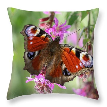 Throw Pillow featuring the photograph European Peacock Butterfly - Nymphalis Io by Jivko Nakev