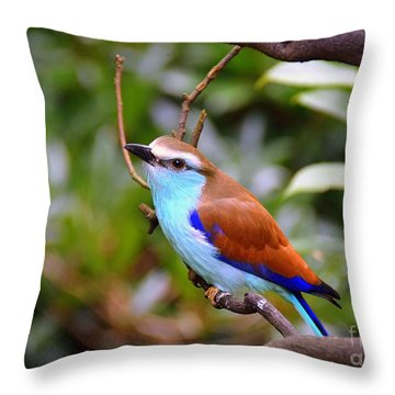 European Roller Throw Pillow