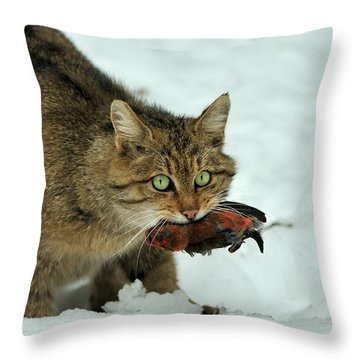 European Wildcat Throw Pillow