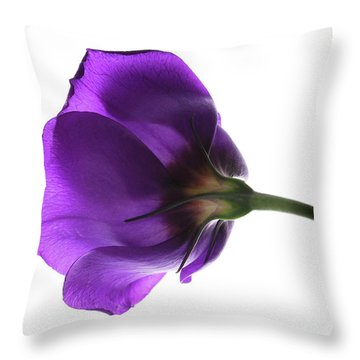 Eustoma Grandiflorum. Throw Pillow