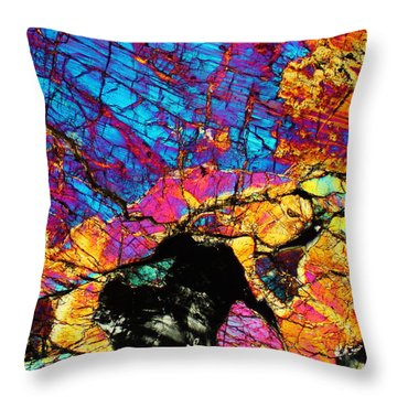 Evader Throw Pillow