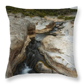 Even Flow At The Pedernales Texas Hill Country Throw Pillow by Silvio Ligutti