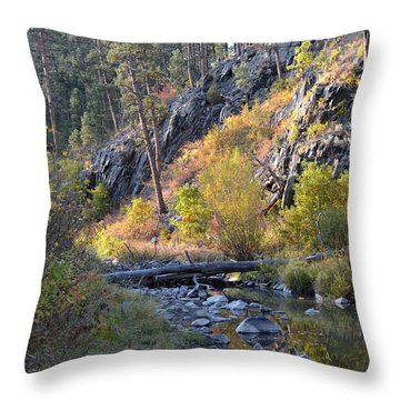 Evening Approaches Spring Creek Throw Pillow