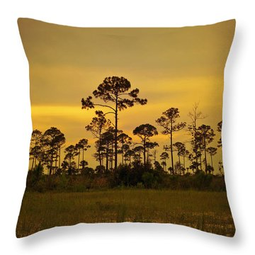Evening At St. Joe Throw Pillow by Toni Hopper