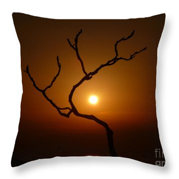 Evening Branch Original Throw Pillow