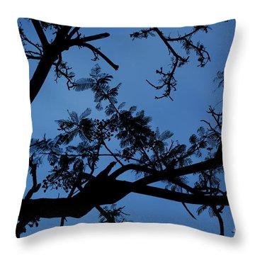 Evening Branches Throw Pillow
