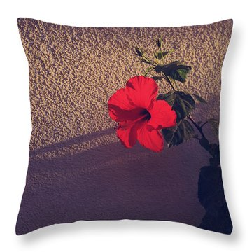 Evening Comes Softly Throw Pillow by Laurie Search