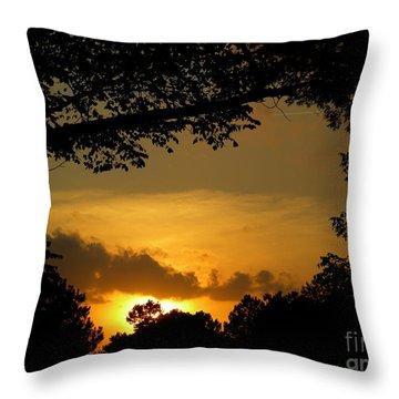 Evening Creations Throw Pillow