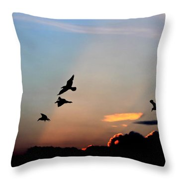 Evening Dance In The Sky Throw Pillow