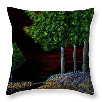Evening Dream Throw Pillow by Tim Townsend