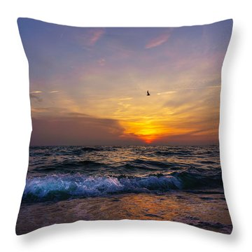 Evening Flight Throw Pillow