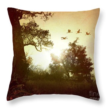 Evening Flying Geese Throw Pillow by Peter Awax