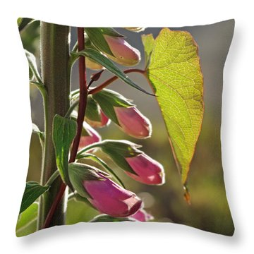 Throw Pillow featuring the photograph Evening Foxglove by Adria Trail