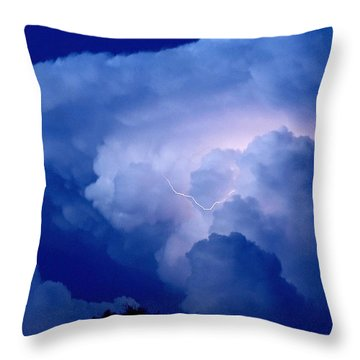 Throw Pillow featuring the photograph Evening Giant by Charlotte Schafer