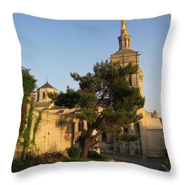 Evening Glow Throw Pillow by Pema Hou