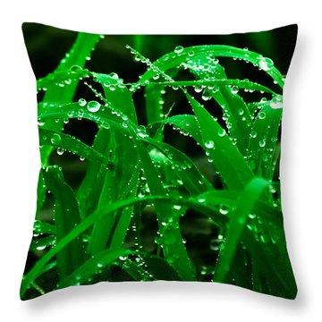 Evening Grass Throw Pillow by Utkarsh Solanki