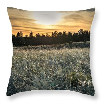 Evening Grasses In The Black Hills Throw Pillow