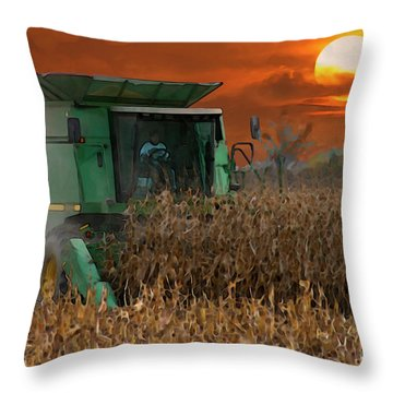 Evening Harvest Throw Pillow by E B Schmidt