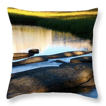 Contemplating Sunset Throw Pillow by Amelia Racca