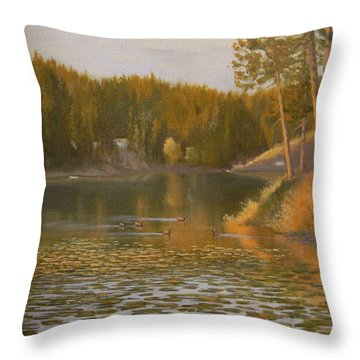 Evening Light On Avondale Throw Pillow