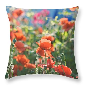 Evening Lights The Poppies Throw Pillow