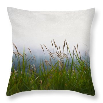 Evening Mist Throw Pillow