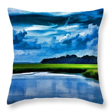 Evening On The Marsh Throw Pillow