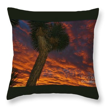 Evening Red Event Throw Pillow