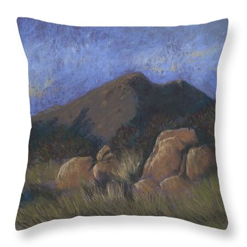 Evening Shadows Fall Throw Pillow