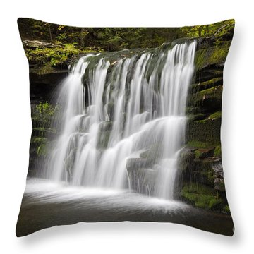 Evening Silk Wilderness Waterfall Throw Pillow