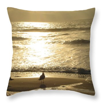 Evening Stroll Throw Pillow by Judith Morris
