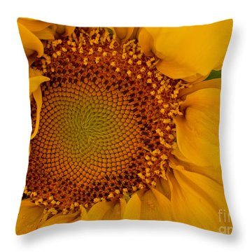 Evening Sunflower Throw Pillow
