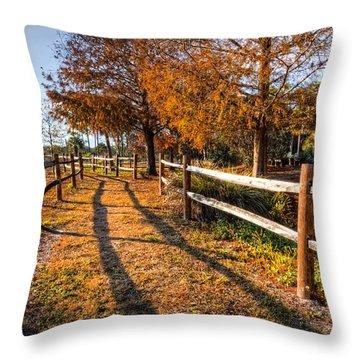 Evening Walk Throw Pillow by Debra and Dave Vanderlaan