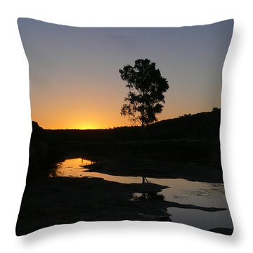 Throw Pillow featuring the photograph Evening Wonderland by Evelyn Tambour