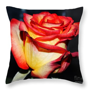 Event Rose 3 Throw Pillow by Felicia Tica