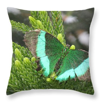 Ever Green Butterfly Throw Pillow