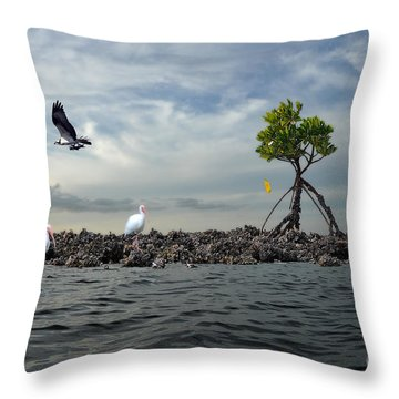 Throw Pillow featuring the photograph Everglade Scene by Dan Friend