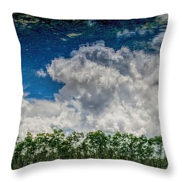 Reflected Everglades 0203 Throw Pillow