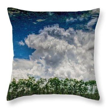Reflected Everglades 0203 Throw Pillow