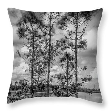 Everglades 0336bw Throw Pillow