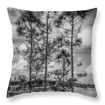 Everglades 0336bw Throw Pillow