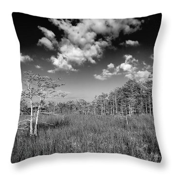 Everglades 9574bw Throw Pillow