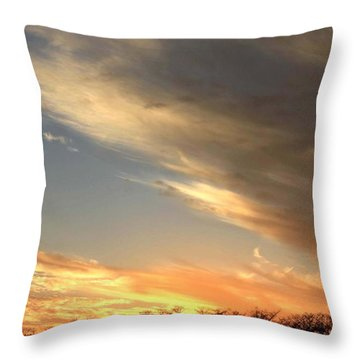 Everglades Clouds Throw Pillow by AR Annahita