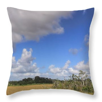 Everglades Landscape Panorama Throw Pillow by Rudy Umans